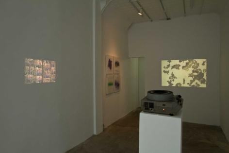 A photograph of the 2 video works thrown on the left wall and back wall
