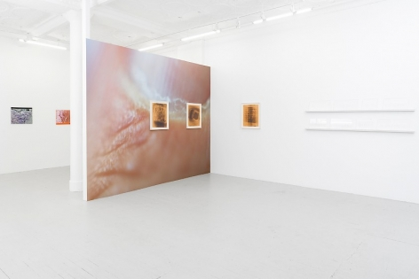 An image taken from the front of the gallery that depicts the temporary wall with artist's wallpaper and 2 framed prints; one framed print and 2 white shelves opposite the temporary wall; and 2 color photographs on plexiglass visible on the wall that runs parallel to the temporary wall further in the background.