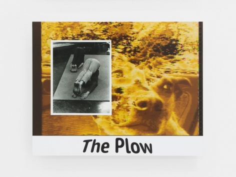 "A yellow, abstracted image of a dog looking to the right with visual static near the top of the image. Centered on the bottom of the dibond is written ""The Plow."" A black and white photograph of two people with their legs up-and-over their heads, on the floor (the plow yoga pose) on a carpet."