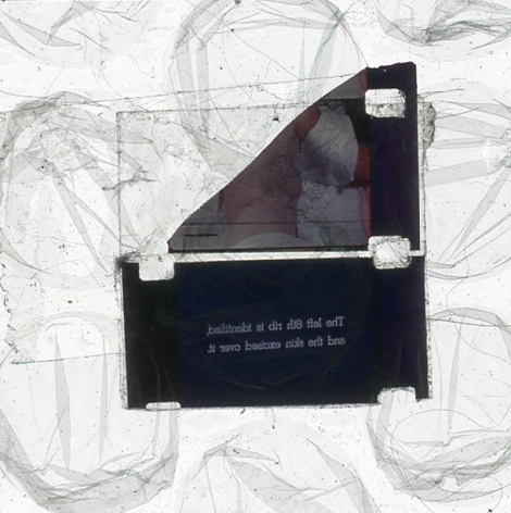 A single slide from Luther Price's video projection. In the center are two pieces of film, seemingly taped to one another, with an unidentifiable image and text. Surrounding these two pieces are abstract gray lines on a white background.