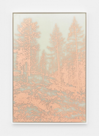 An image of a forest etched out of copper on a milky background