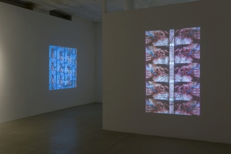 A photograph of two Luther Price video projections. In the foreground on the temporary wall we see images of a wound being drained in repetition; on the far wall to the left we seen a butterfly on a blue background.