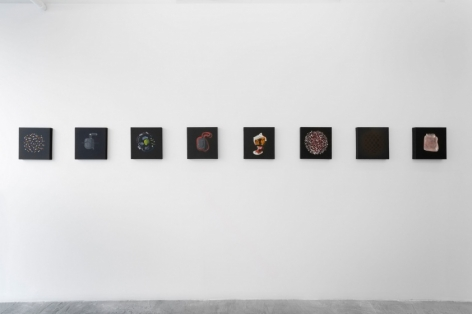 A photograph of 8 square paintings installed on a white wall