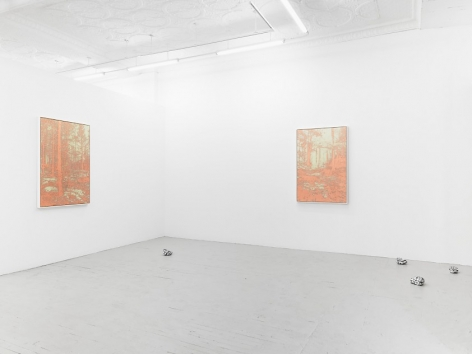 A photograph of two framed copper-etchings hung on the wall, installed around the front corner of the gallery including the temporary wall. There are 4 painted rocks scattered around the floor as well.