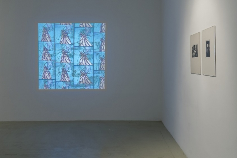 A view that shows a Luther Price video projection on the far wall, depicting a butterfly on a blue background, and two black and white photographs by Hervé Guibert in cream mattes.