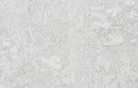 A detail shot of the pencil drawing containing blades of grass, leaves, and flowers.