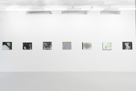 A view of the whole wall at left of the gallery entrance: there are 7 color photographs mounted to plexiglass.