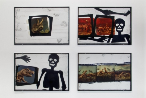 Four works framed in black that include enlarged film slides, drawings of skeletons, and dinosaur figurines.