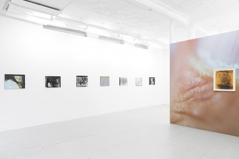 An image of the gallery from the front of the room, at an angle. There are 7 color photographs mounted on plexiglass on the wall at left of the image. At right there is a wallpaper on the gallery's temporary wall and a framed abstract print installed over the wallpaper.