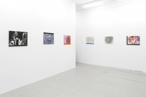 Six color photographs on plexiglass installed around the corner of the room, 3 on each wall.