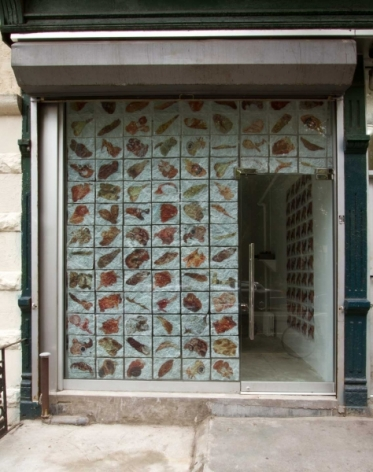 A photograph from the exterior of the gallery, with it's window tessellated with images of meat and flesh
