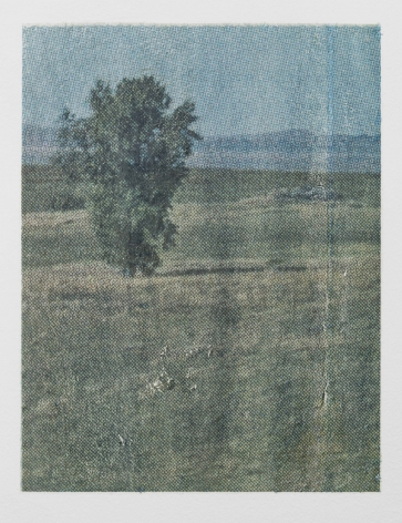 A print of a grassy field with a tree at left, with a blue sky in the background. The Benday dots of the print are apparent.