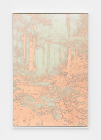 A photograph of a photo-etching made from copper, where the image is a heavily wooded landscape with all positive space defined in orange copper. The background looks like a cloudy grey-green.