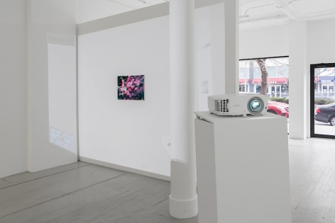 The backside of the temporary wall in the gallery which includes a single artwork and a video being played over it. The video itself is a Google image of the interior of the gallery, which also has the artwork embedded. In the foreground, we see another projector being used for artworks that are behind the viewer's point of view. We also see the front window and door of the gallery.