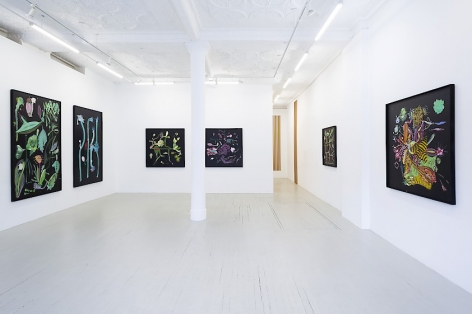Installation view of 6 paintings at Callicoon Fine Arts