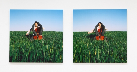 Su-Mei Tse Le Musicien Autiste (The Autistic Musician), 1999-2003