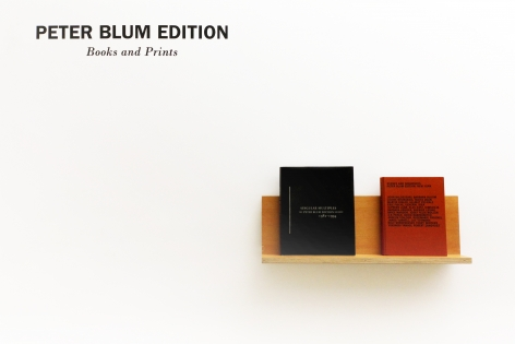 Installation ofPeter Blum Edition: Books and Prints, July 6 – September 1, 2015