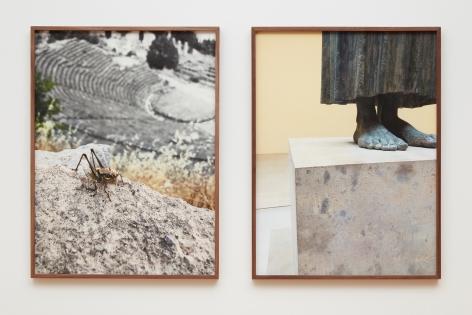 Su-Mei Tse Delphi: Grasshopper (Delphi) and The Charioteer of Delphi, 2019