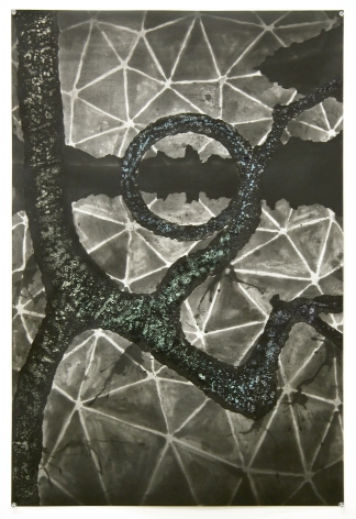 [Print C] from: Missing Link (Lady Liberty) from The Dymaxion Series