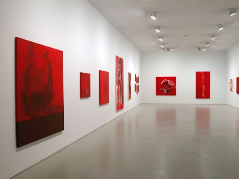 Installation view of Jason Fox, The Upper Depths, 2009 at Peter Blum SoHo.