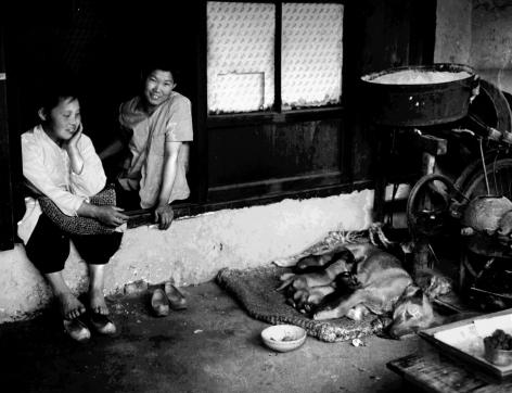 Chris Marker Koreans, Untitled 20, 1957