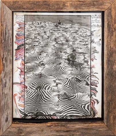 Peter Beard Zebra Carpet @ Ol Morani, Lariak Estate, Kenya, 1960