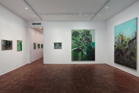Hurvin Anderson, Subtitles, New York, 2011, Installation Image 1