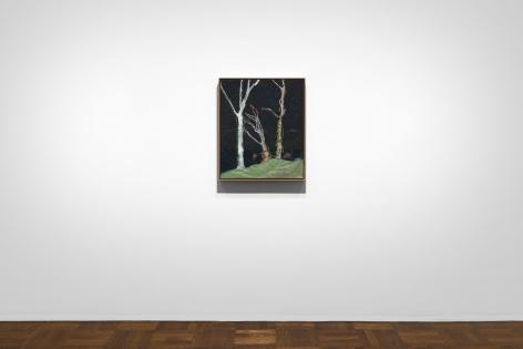 Peter Doig, New York, 2017, Installation Image 3