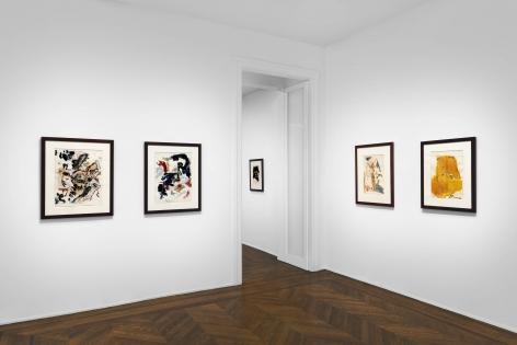 Don Van Vliet, Works on Paper, New York, 2017, Installation Image 10