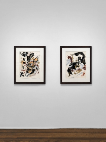 Don Van Vliet, Works on Paper, New York, 2017, Installation Image 16