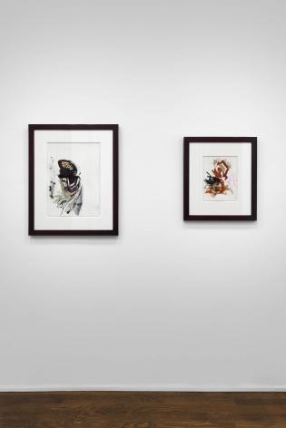 Don Van Vliet, Works on Paper, New York, 2017, Installation Image 7
