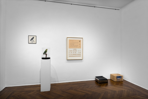 MARCEL BROODTHAERS Écriture 28 January through 26 March 2016 UPPER EAST SIDE, NEW YORK, Installation View 13
