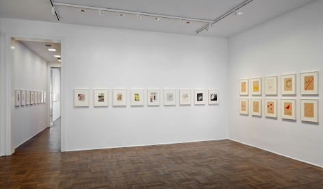 Sigmar Polke, Early Works on Paper, New York, 2014, Installation Image 1