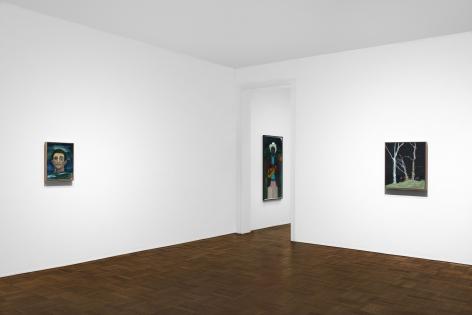 Peter Doig, New York, 2017, Installation Image 6