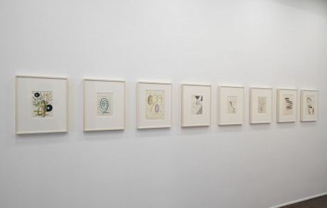 Sigmar Polke, Early Works on Paper, New York, 2014, Installation Image 10