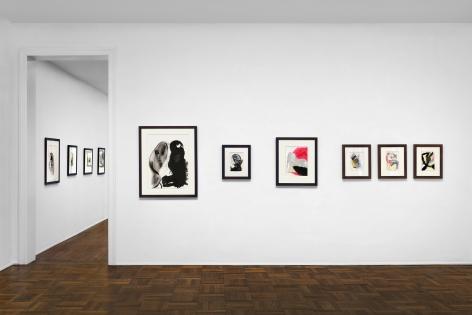 Don Van Vliet, Works on Paper, New York, 2017, Installation Image 1
