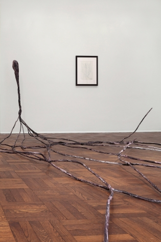 Enrico David, NERVE ENDING, New York, 2012, Installation Image 4