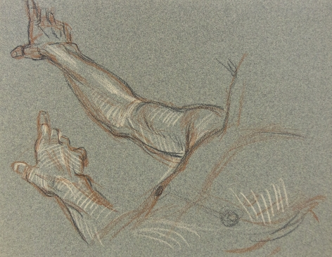 """Male Torso (Studies of a Hand)"", ca. 1980-1989"