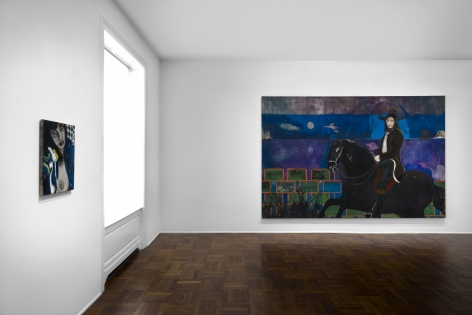 Peter Doig, New York, 2015, Installation Image 8