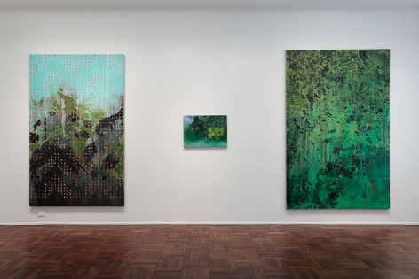 Hurvin Anderson, Subtitles, New York, 2011, Installation Image 4