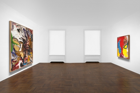 Don Van Vliet, Parapliers the Willow Dipped, Paintings 1967-1997, New York, 2020, Installation Image 4