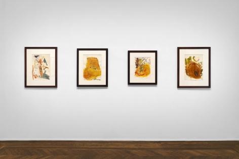 Don Van Vliet, Works on Paper, New York, 2017, Installation Image 11