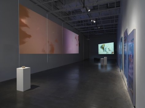 This End the Sun, Installation view at New Museum, New York, 2021