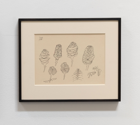 Anwar Jalal Shemza, Pine Cones, 1977, Ink on paper, 21.3 x 29.7 cm
