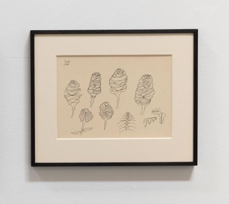 Anwar Jalal Shemza, Pine Cones, 1977, Ink on paper, 21.3 x 29.7 cm