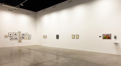 A Permanent Record For Future Investigation, Installation at Green Art Gallery, Dubai, 2012