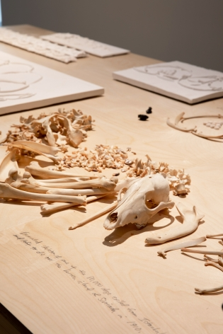 Michael Rakowitz,The flesh is yours, the bones are ours (detail), 2015, Installation view at Jameel Arts Centre, Dubai, UAE, 2020