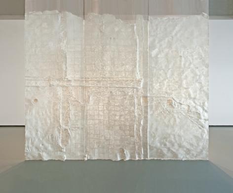Nazgol Ansarinia,Membrane, 2014, Paper, paste, glue,550 x 500 cm