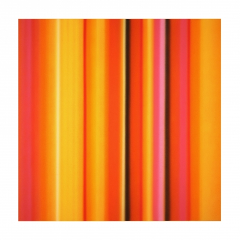 Tangerine, 2017 Synthetic polymer on canvas