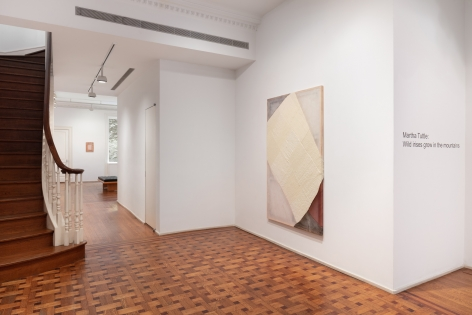 """This image is an installation view of the exhibition of artworks by Martha Tuttle titled """"Wild irises grow in the mountains""""."""